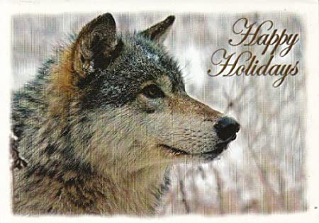 Happy Gray Wolf Happy Holidays Gray Wolf