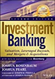 Investment Banking: Valuation, Leveraged Buyouts, and Mergers & Acquisitions (Wiley Finance)