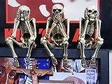 TBS 金曜ドラマ 「ヤマトナデシコ七変化」 にも登場!skull daddy (スカルダディー) スカル PC トッパー 3体セット (NO SEE, NO SAY, NO HEAR)