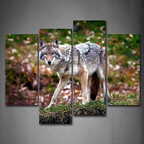 Wolf Stand On Grass Fallen Leafs Wall Art Painting The Picture Print On Canvas Animal Pictures For Home Decor Decoration Gift