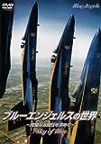 ブルーエンジェルスの世界~完璧なる飛行を求めて~ [DVD]