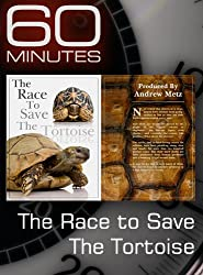 60 Minutes - The Race to Save the Tortoise