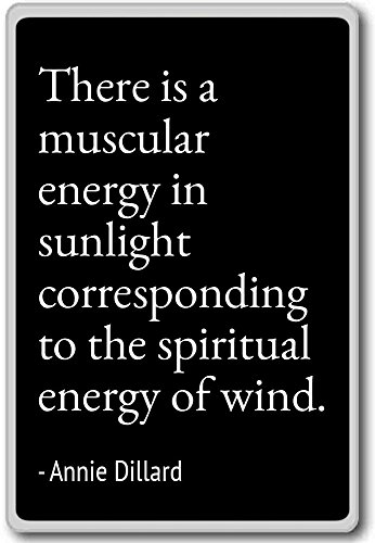 there-is-a-muscular-energy-in-sunlight-corres-annie-dillard-quotes-fridge-magnet-black