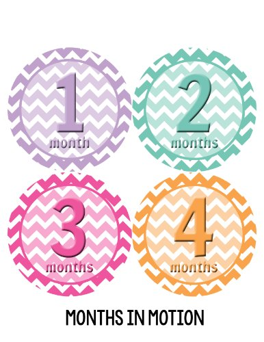 Months in Motion 280 Baby Month Stickers for Newborn Girl Pastel Chevron