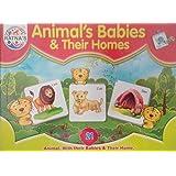 ANIMAL'S BABIES & THEIR HOMES
