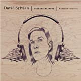Died In The Woolby David Sylvian