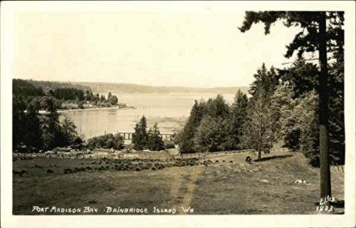 Port-Madison-Bay-Bainbridge-Island-Washington-Original-Vintage-Postcard
