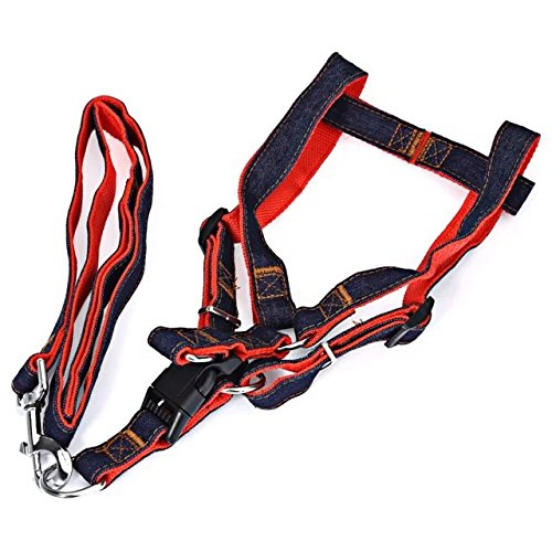 Pinze Wonder Walker Dog Harness Adjustable Pet Dog Walking Nylon Leash for Large Dogs (Wonder Walker Harness compare prices)