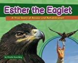 Esther the Eaglet: A True Story of Rescue and Rehabilitation