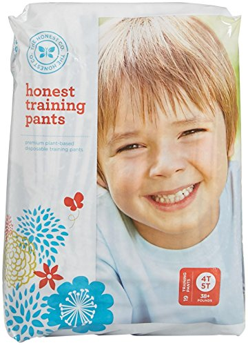 The Honest Company Training Pants - 4T-5T - 19 ct (Honest Company 4t compare prices)