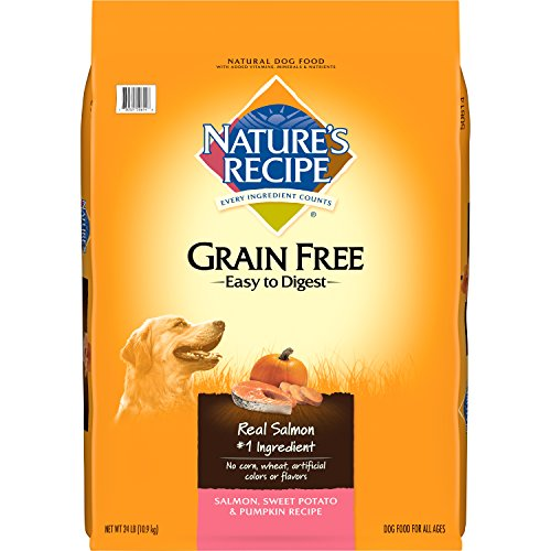 Easy Digest Grain Free Dog Food