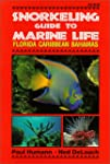 Snorkeling Guide to Marine Life: Flor...