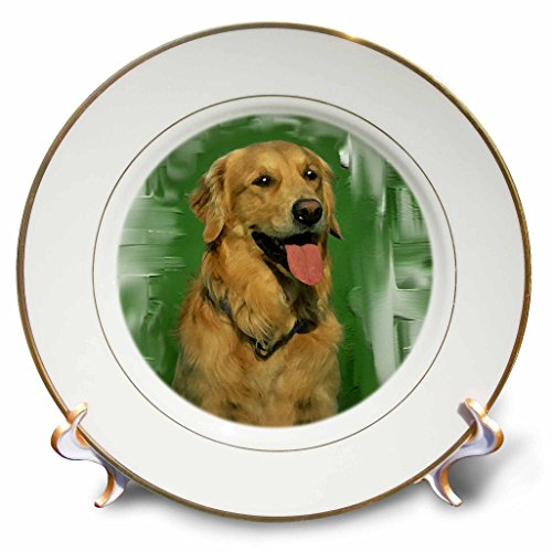 3dRose cp_4022_1 Golden Retriever Porcelain Plate, 8-Inch