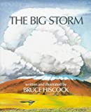 img - for The Big Storm book / textbook / text book