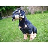 Rottweiler Rottweil Metzgerhund Dog REAL LIFE SIZE SOFT TOY PLUSH 47CM