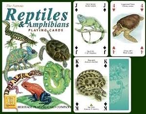 Reptiles & Amphibians Cards