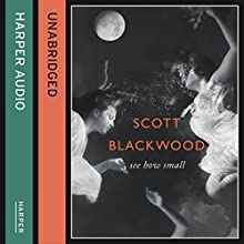 See How Small (       UNABRIDGED) by Scott Blackwood Narrated by Rengin Altay