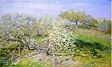 High Quality Polyster Canvas ,the High Resolution Art Decorative Prints On Canvas Of Oil Painting 'Apple Trees In Bloom, 1873 By Claude Monet', 16x27 Inch / 41x68 Cm Is Best For Hallway Artwork And Home Artwork And Gifts
