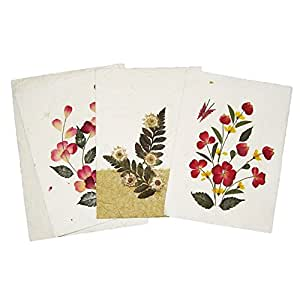 Wedding Gift Ideas On Amazon : ... Wedding Gift Card ideas - Assorted Pack of 3 handmade Cards with fern