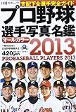 プロ野球選手写真名鑑 2013年―オールカラー (NIKKAN SPORTS GRAPH)