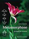 Image de Metamorphose: Kunstgriff der Evolution