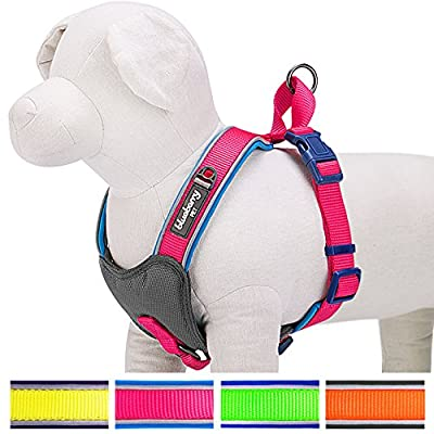 Blueberry Pet Soft & Comfortable Summer Hope 3M Reflective No Pull Neoprene Padded Dog Harness, 4 Colors, Matching Collar Available Separately