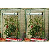 2 x GROWBAG GROWHOUSE/GREENHOUSE TOMATOES GARDEN PLANTS