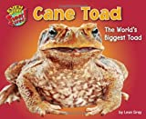 img - for Cane Toad: The World s Biggest Toad (Even More Supersized!) book / textbook / text book