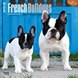 French Bulldogs 2015 Square 12x12 (Multilingual Edition)