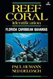 Reef Coral Identification: Florida Caribbean Bahamas, Including Marine Plants