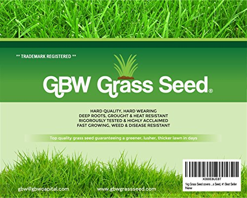 1kg-Just-Grass-Seed-covers-35-sqm-Premium-quality-seed-Fast-growing-Hard-wearing-lawn-seed-Tailored-to-UK-climate-50-Amenity-Ryegrass-50-Red-Fescue-from-GBW-Capital-1-Best-Seller