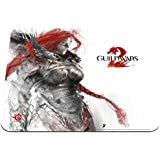 SteelSeries - Tapis de Souris QcK Guild Wars 2 Eir Edition