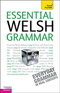 Essential Welsh Grammar: A Teach Yourself Guide  by Christine Jones