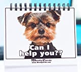 Funny Office Gifts - NEW Pet Moodycards! Make Everyone Laugh with These Lovable Pets - Let These Hilarious Dog Pictures Tell Everyone How You Feel - The Ultimate Gag Sure to Brighten Everybodys Day - Express Yourself Without Saying a Word -Take the Stress Away with Good Vibes and Huge Smiles - Fun, Hilarious, Useful and Adorable - A Great Office Gag Gift - 20 Different Moods and Messages - 100% Risk Free Moneyback Guarantee