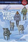 Ice Wreck (A Stepping Stone Book(TM))
