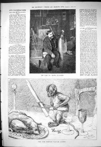 Antique Print Of 1881 Portrait Frank Buckland Fish Monkey Fork Knife Dinner Table Dadd