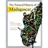 The Natural History of Madagascarby Steven M Goodman
