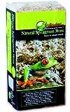 REPTILES PLANET Substrat pour Reptiles Natural Sphagnum d'occasion  Livré partout en France