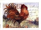 Le Rooster I Art Poster PRINT Susan Winget 8x6