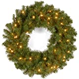 National Tree KCDR-24WLO 24-Inch Kincaid Spruce Wreath with 50 Clear Lights