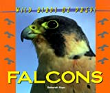 img - for Wild Birds of Prey - Falcons book / textbook / text book