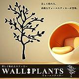 STARDUST プラント ウォールステッカー 植物 モチーフ 大きめ 木 ツリー インテリア 小物 お洒落 シール 貼り付け (Aタイプ) SD-PLASTE-A