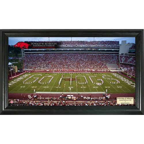 Arkansas Stadium Gridiron Photo at Amazon.com