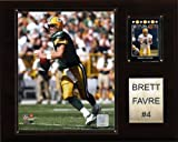 NFL Brett Favre Green Bay Packers Player Plaque Amazon.com