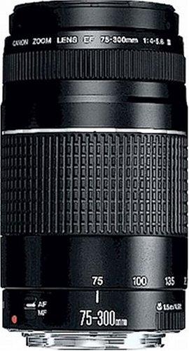 Canon EF 75-300mm/ 4,0-5,6/ III