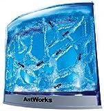 Fascinations - Antworks Illuminated, Uk Plug