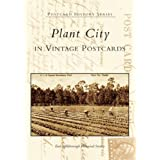 Plant City, Florida in Vintage Postcards (Postcard History)