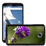 Hot Style Cell Phone PC Hard Case Cover M00310539 Common Columbine Flower Purple Plant LG Google Nexus 6