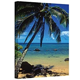 Art Wall Beautiful Animi Beach Gallery Wrapped Canvas by Kathy Yates, 24 by 36-Inch