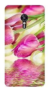 TrilMil Printed Designer Mobile Case Back Cover For Lenovo ZUK Z2 Pro